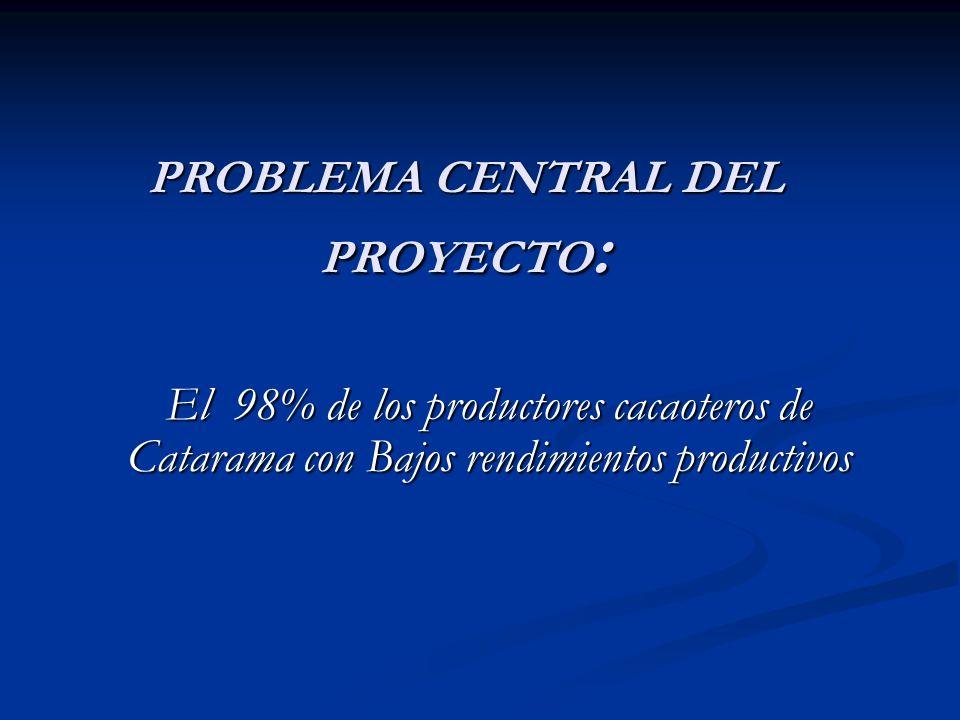 PROBLEMA CENTRAL DEL PROYECTO: