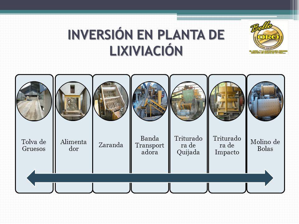 INVERSIÓN EN PLANTA DE LIXIVIACIÓN