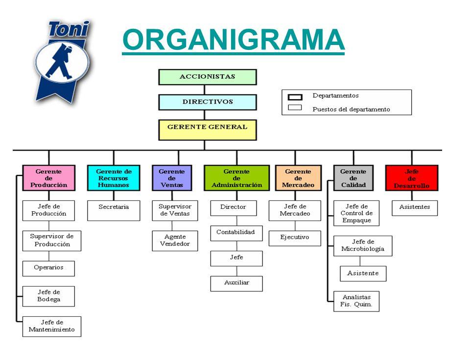 ORGANIGRAMA 303