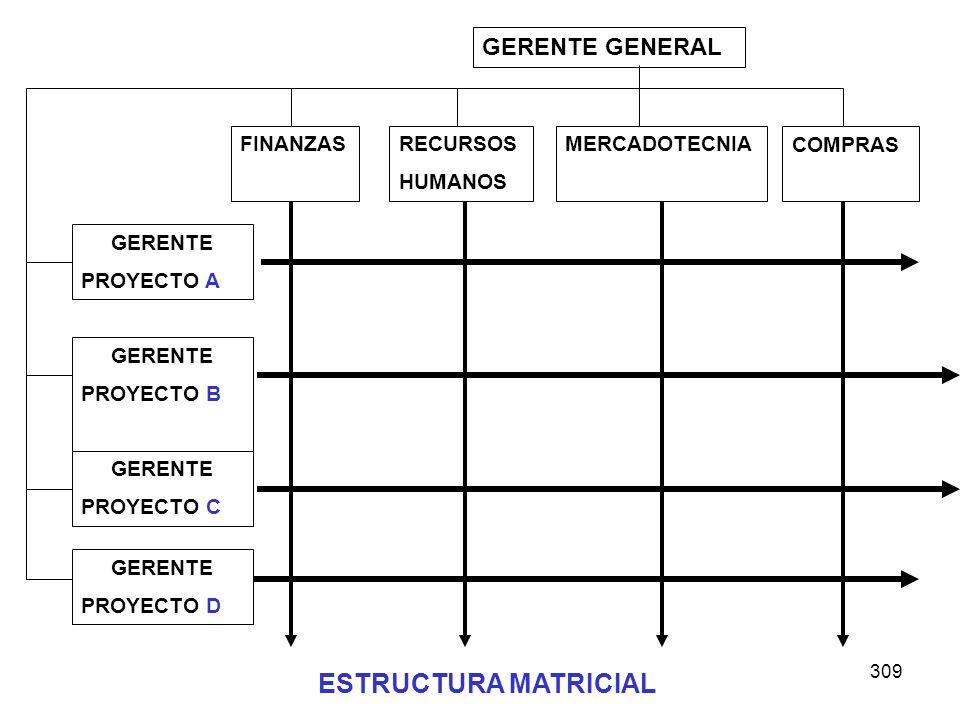 ESTRUCTURA MATRICIAL GERENTE GENERAL FINANZAS RECURSOS HUMANOS