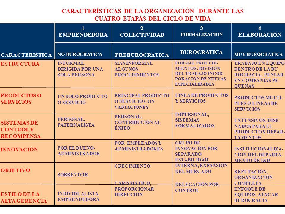 CARACTERISTICA 1. EMPRENDEDORA. NO BUROCRATICA. 2. COLECTIVIDAD. PREBUROCRATICA. 3. FORMALIZACION.