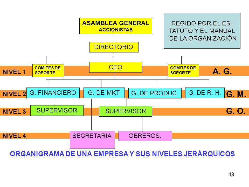 ORGANIGRAMA DE UNA EMPRESA Y SUS NIVELES JERÁRQUICOS