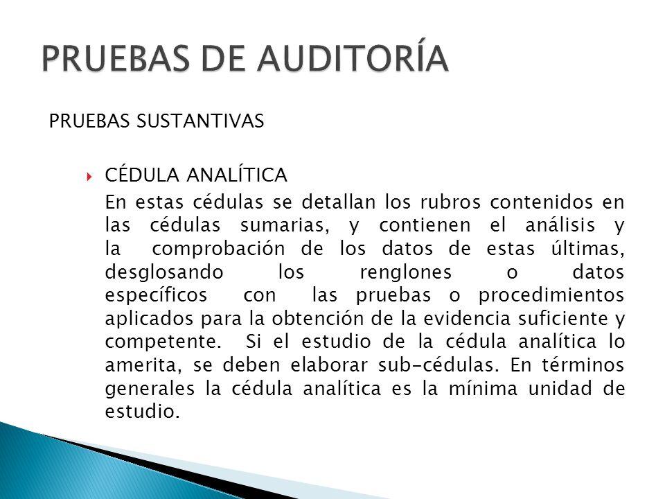 PRUEBAS DE AUDITORÍA PRUEBAS SUSTANTIVAS CÉDULA ANALÍTICA