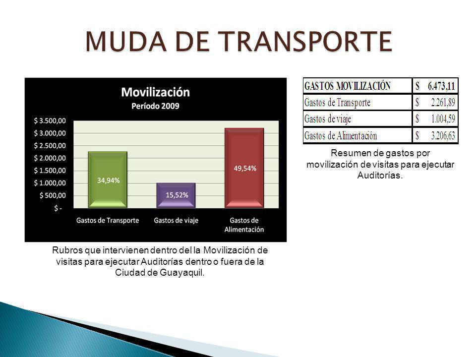 MUDA DE TRANSPORTE Resumen de gastos por movilización de visitas para ejecutar Auditorías.