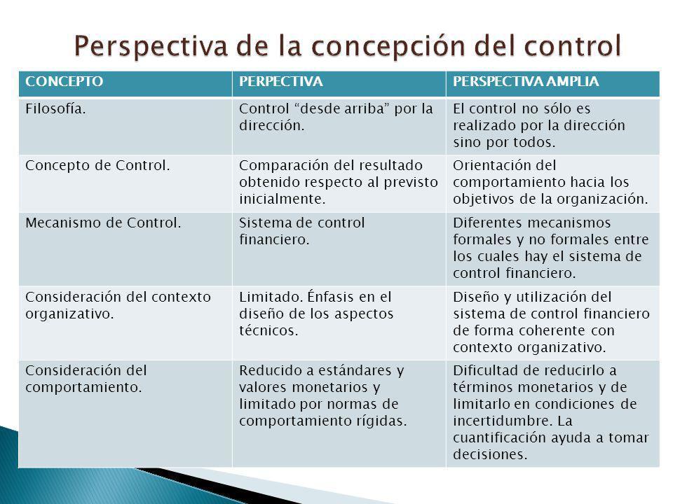 Perspectiva de la concepción del control