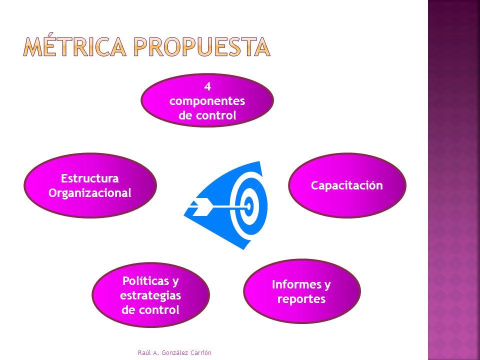 Métrica Propuesta 4 componentes de control Estructura Organizacional