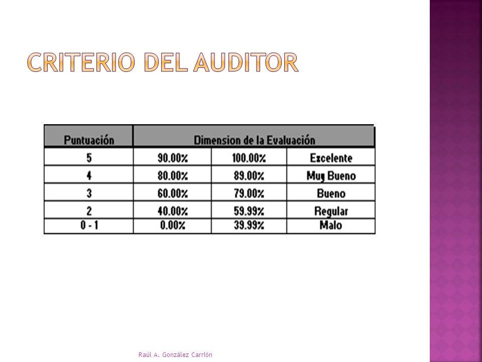Criterio del auditor Raúl A. González Carrión