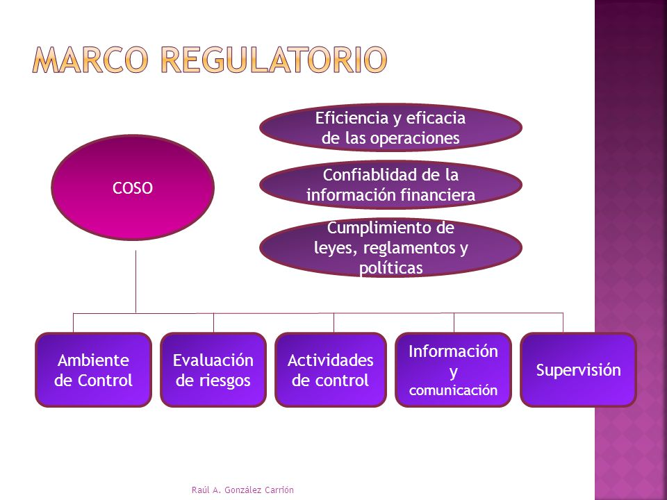 Marco Regulatorio Eficiencia y eficacia de las operaciones COSO