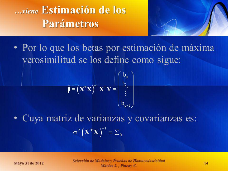 …viene Estimación de los Parámetros