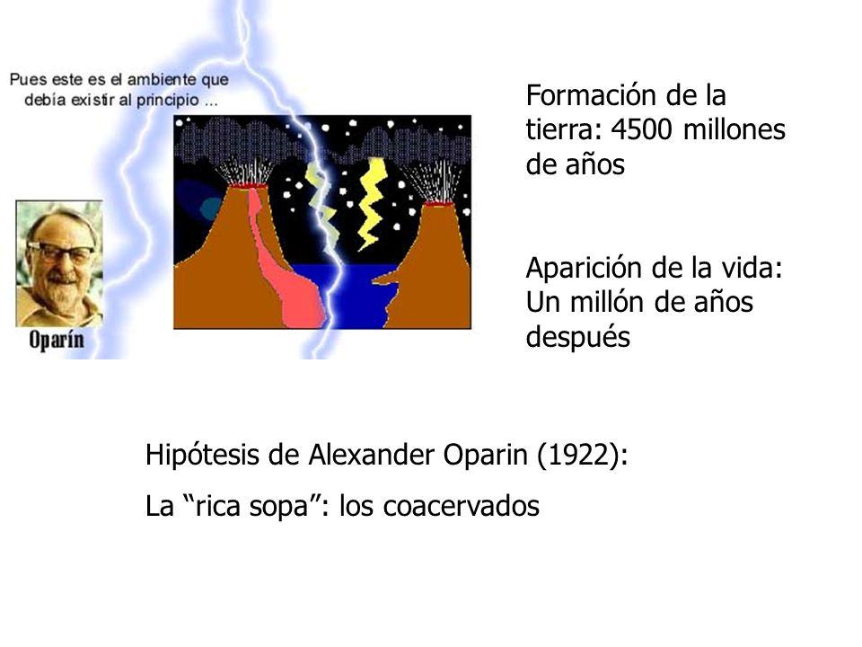 Formación de la tierra: 4500 millones de años