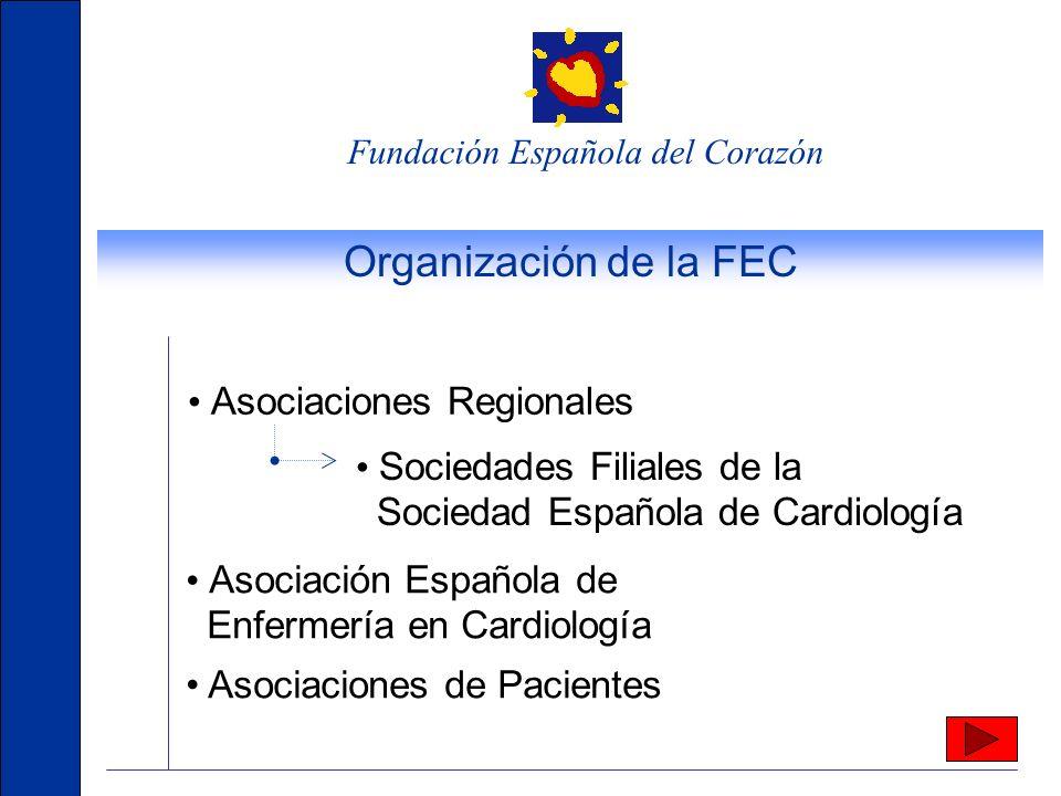 Organización de la FEC • Asociaciones Regionales