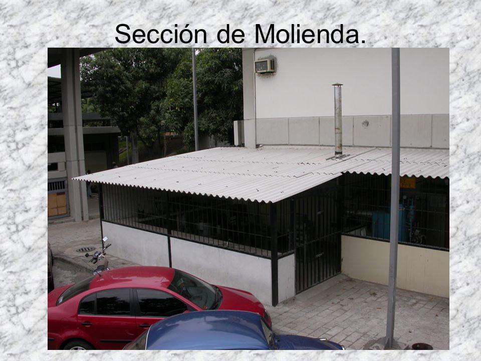 Sección de Molienda.