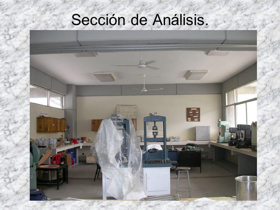 Sección de Análisis.