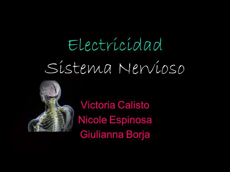 Electricidad Sistema Nervioso