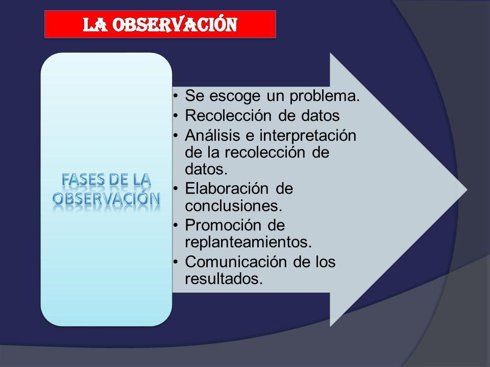 FASES DE LA OBSERVACIÓN
