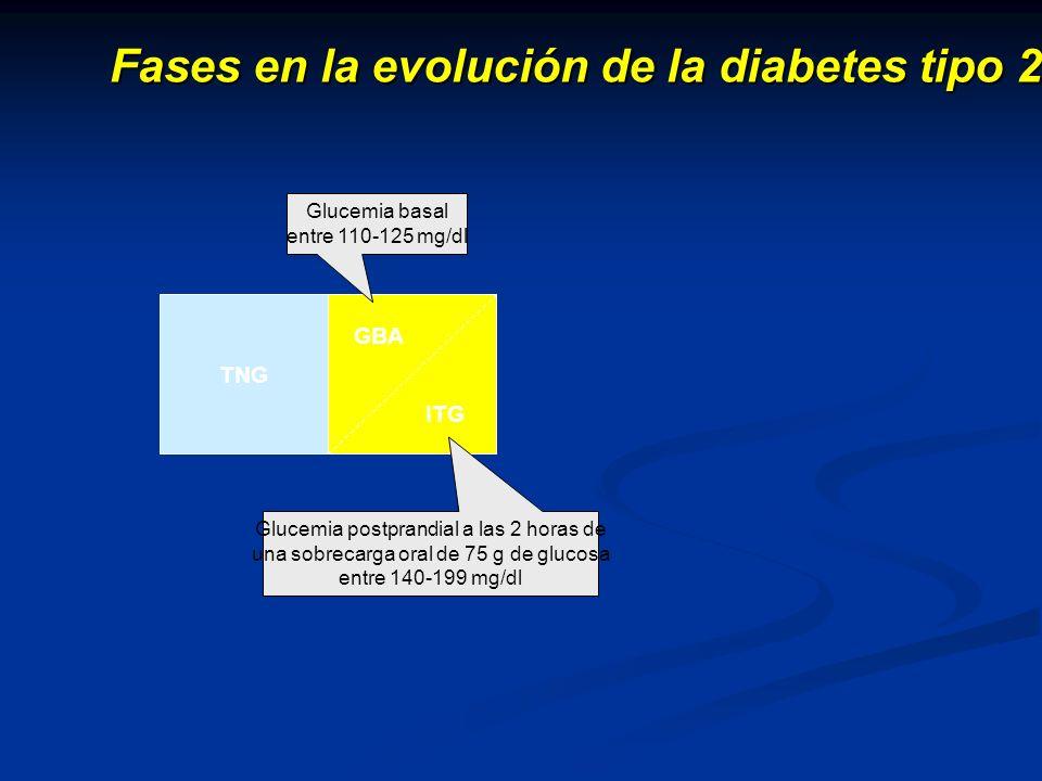 Fases en la evolución de la diabetes tipo 2