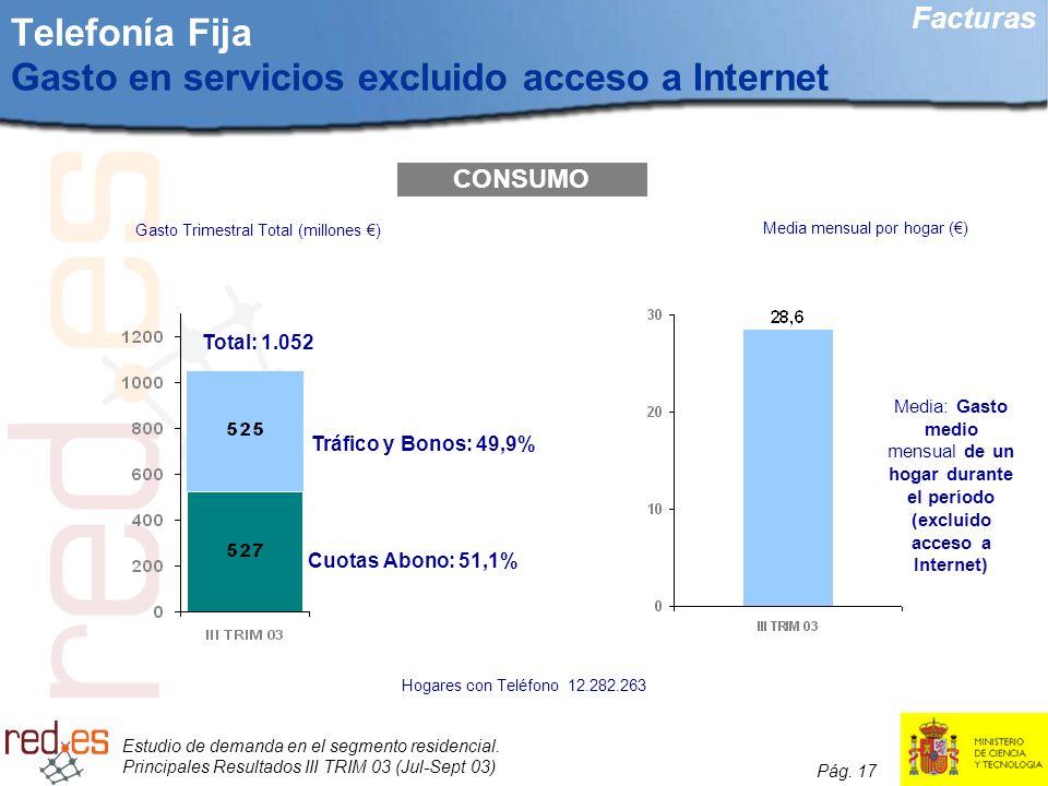 Telefonía Fija Gasto en servicios excluido acceso a Internet
