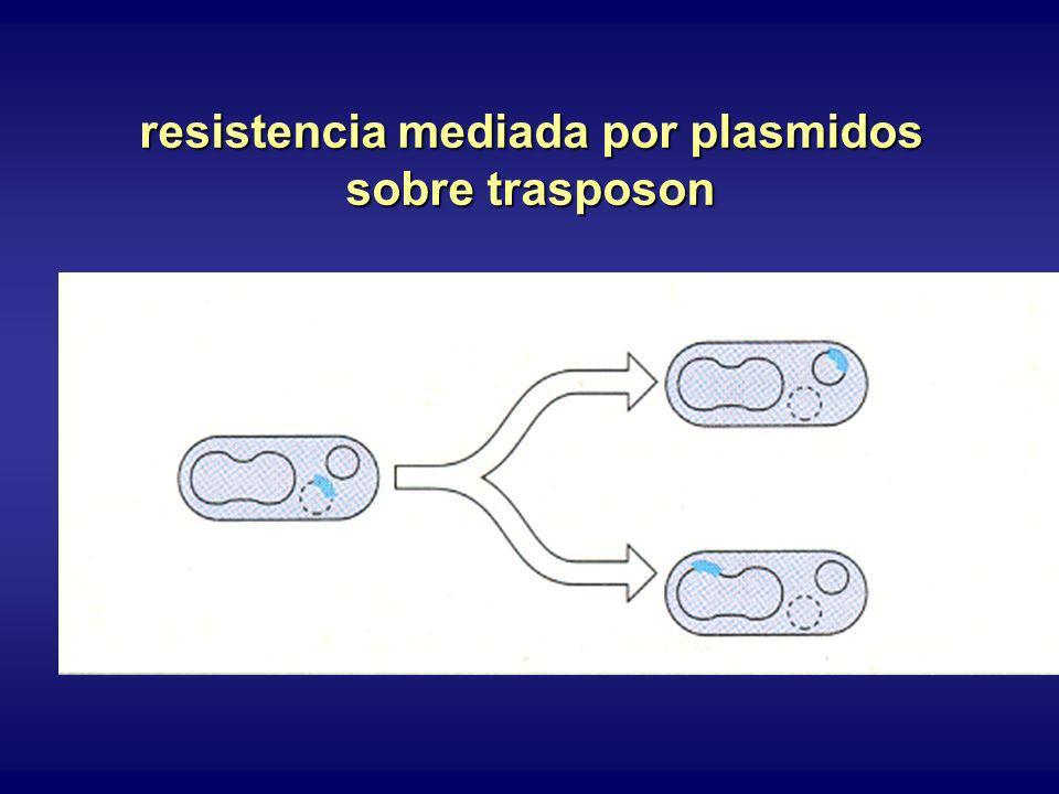 resistencia mediada por plasmidos