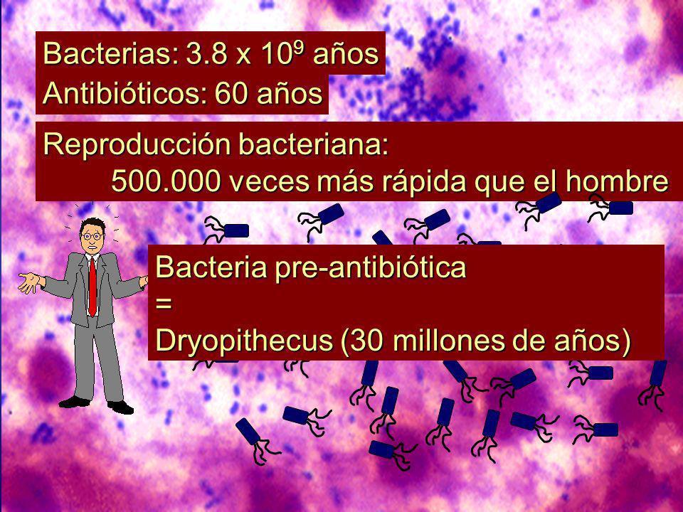 Bacterias: 3.8 x 109 años Antibióticos: 60 años. Reproducción bacteriana: 500.000 veces más rápida que el hombre.