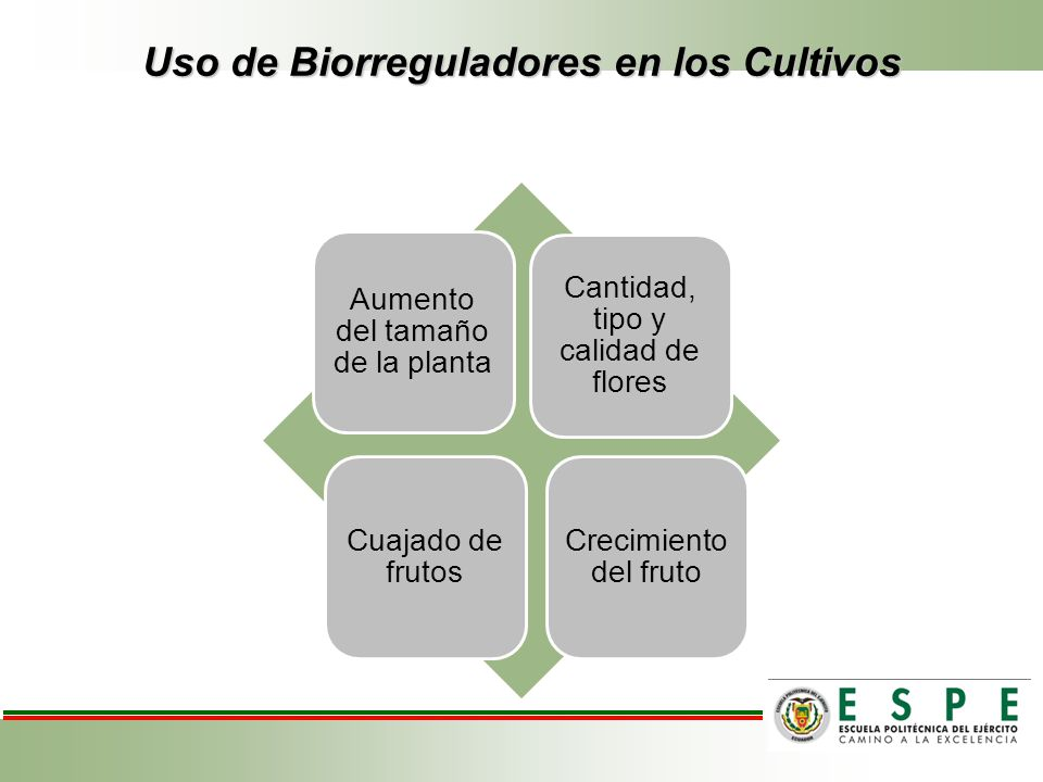 Uso de Biorreguladores en los Cultivos