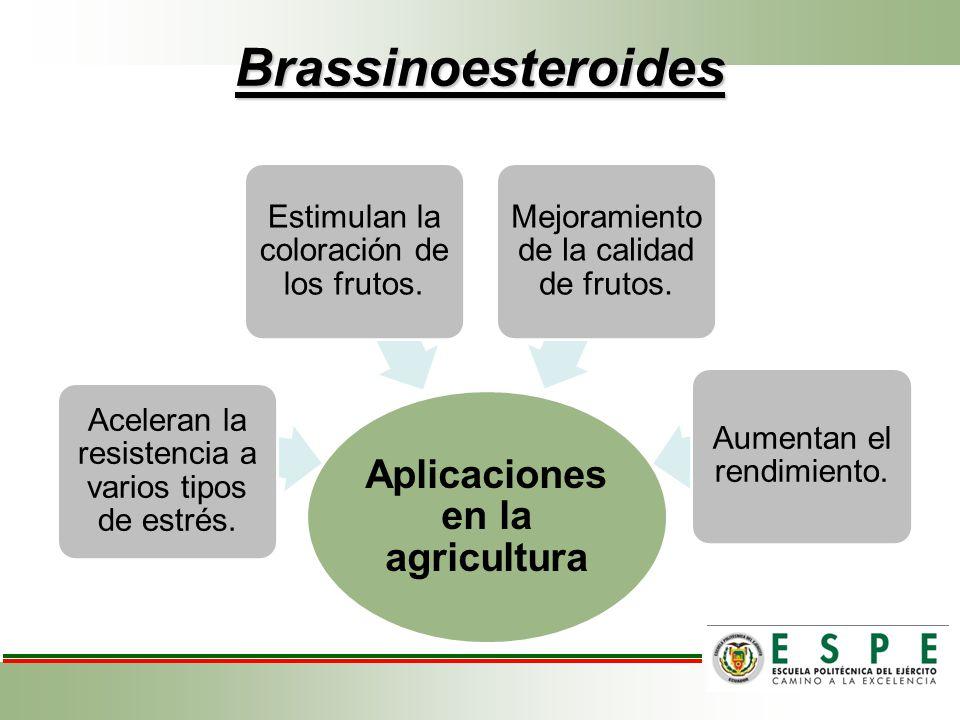 Aplicaciones en la agricultura
