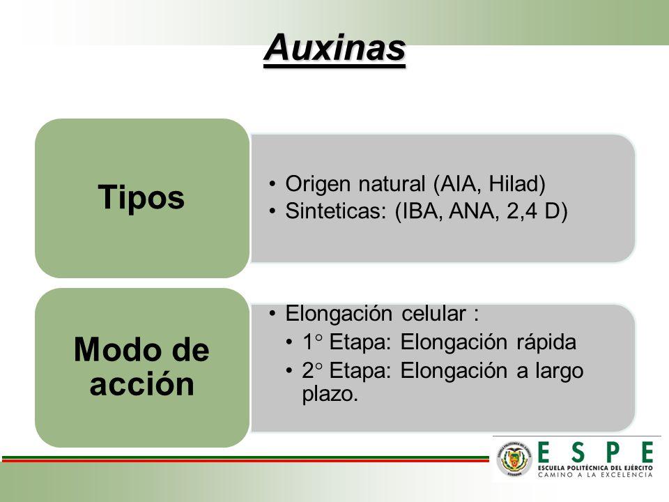 Auxinas Modo de acción Tipos Origen natural (AIA, Hilad)