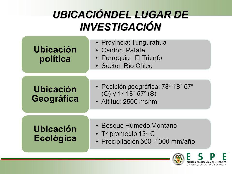 UBICACIÓNDEL LUGAR DE INVESTIGACIÓN