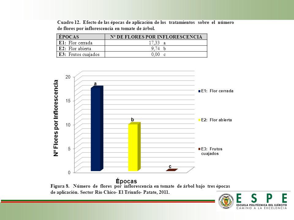 Nº DE FLORES POR INFLORESCENCIA