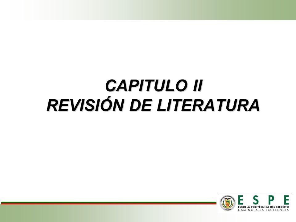 CAPITULO II REVISIÓN DE LITERATURA