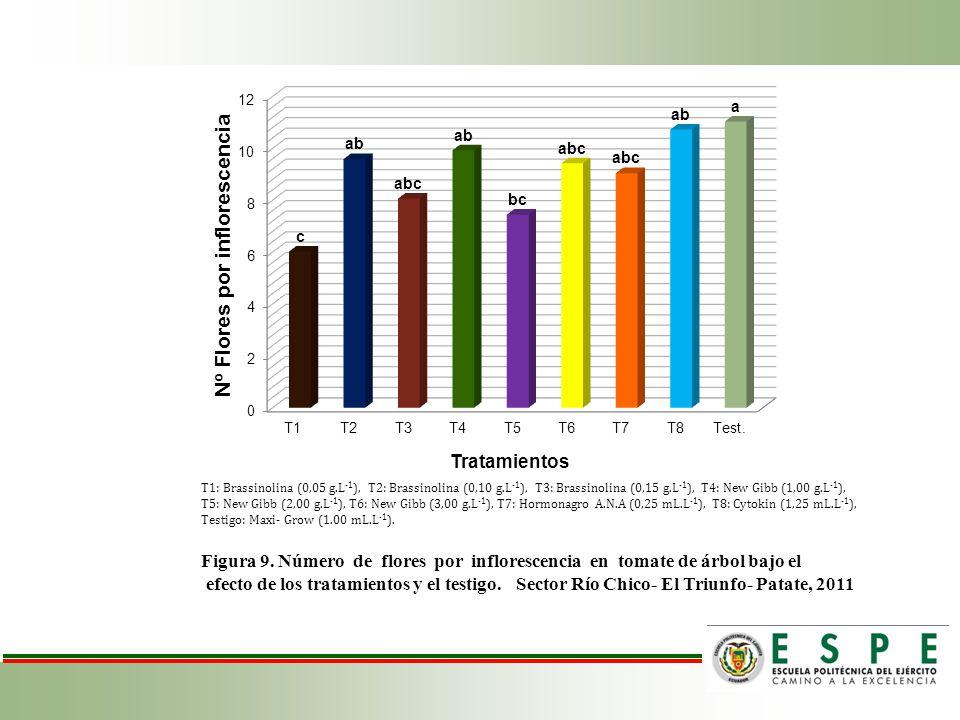 T1: Brassinolina (0,05 g. L-1), T2: Brassinolina (0,10 g
