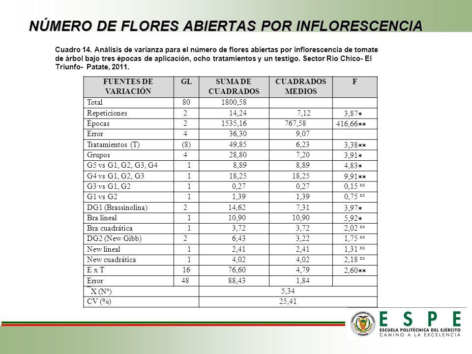 NÚMERO DE FLORES ABIERTAS POR INFLORESCENCIA