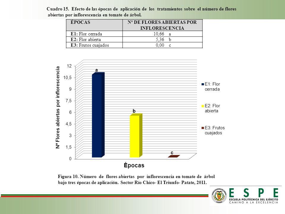 Nº DE FLORES ABIERTAS POR INFLORESCENCIA