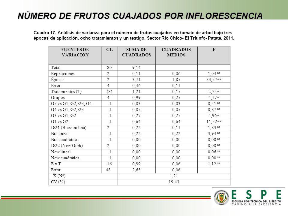 NÚMERO DE FRUTOS CUAJADOS POR INFLORESCENCIA