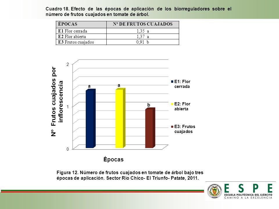 Cuadro 18. Efecto de las épocas de aplicación de los biorreguladores sobre el número de frutos cuajados en tomate de árbol.