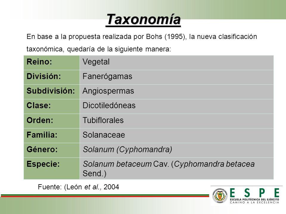Taxonomía Reino: Vegetal División: Fanerógamas Subdivisión: