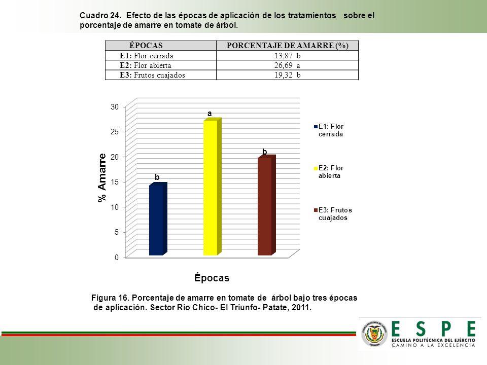PORCENTAJE DE AMARRE (%)