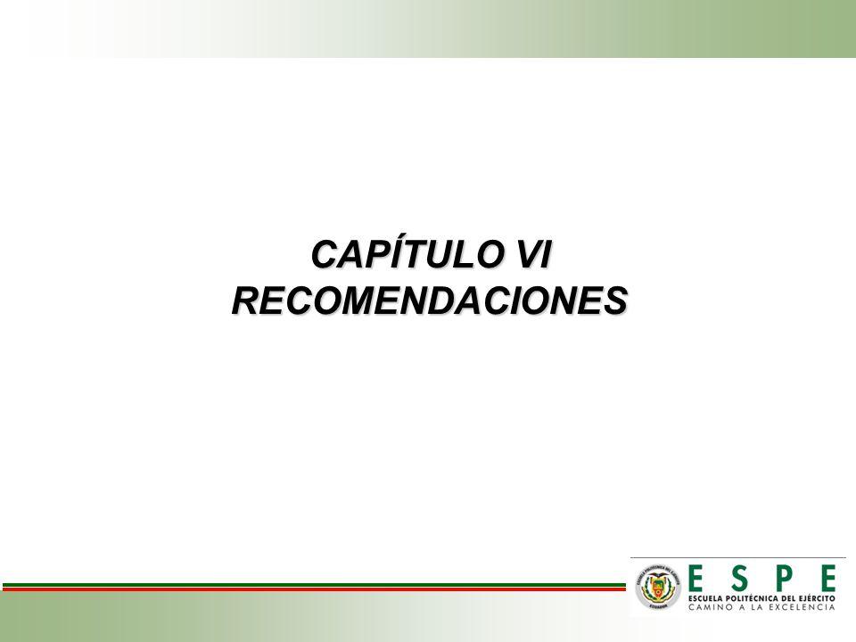 CAPÍTULO VI RECOMENDACIONES