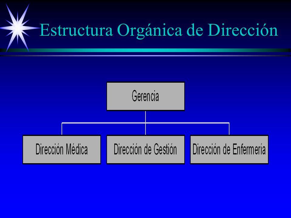 Estructura Orgánica de Dirección