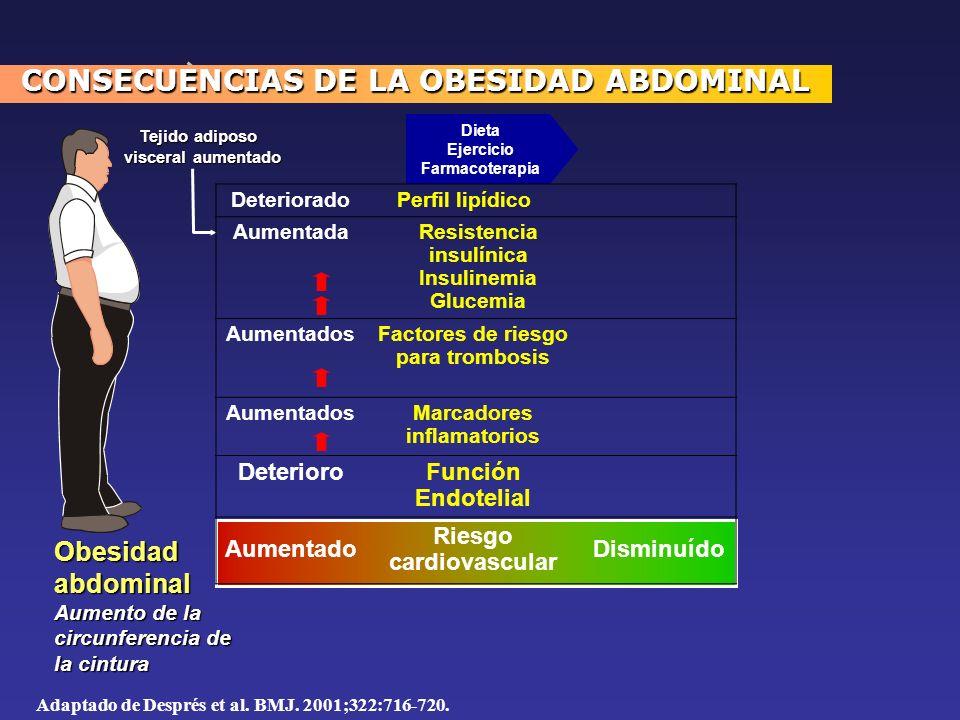 CONSECUENCIAS DE LA OBESIDAD ABDOMINAL