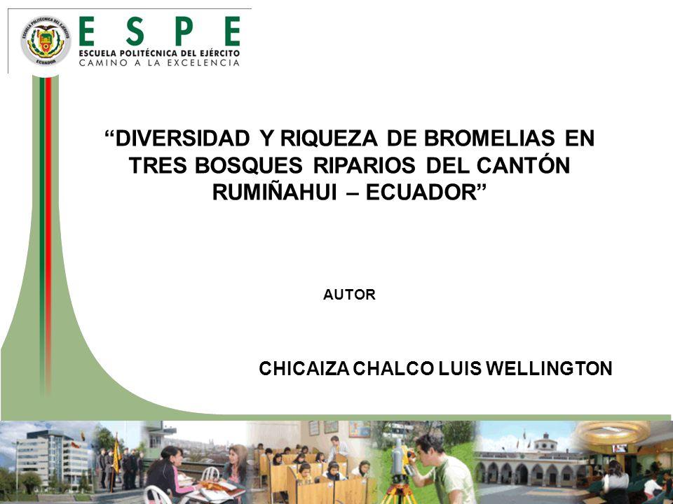 DIVERSIDAD Y RIQUEZA DE BROMELIAS EN TRES BOSQUES RIPARIOS DEL CANTÓN RUMIÑAHUI – ECUADOR