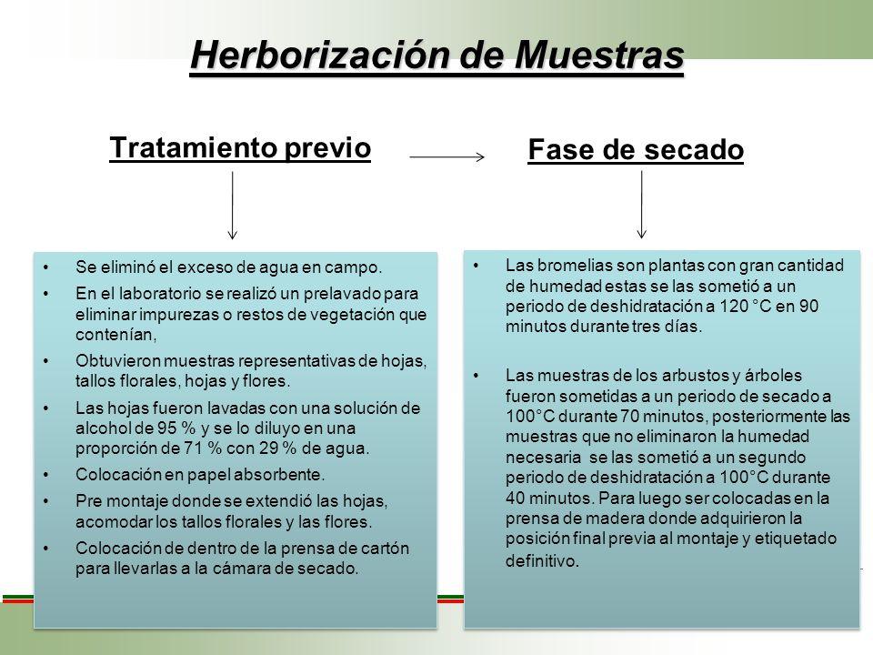 Herborización de Muestras