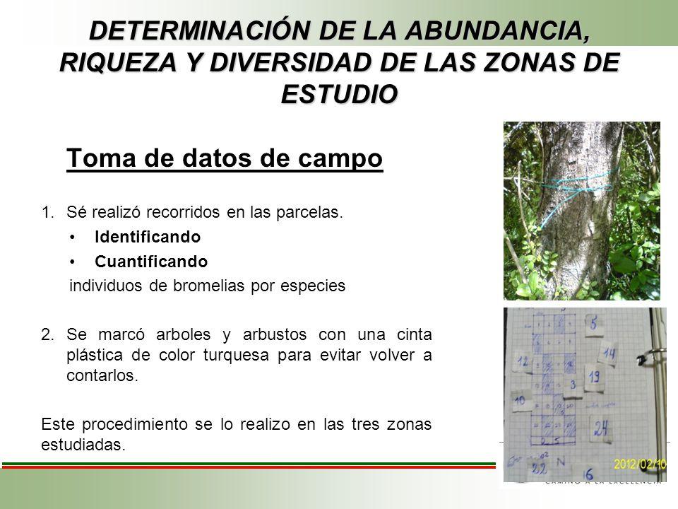 DETERMINACIÓN DE LA ABUNDANCIA, RIQUEZA Y DIVERSIDAD DE LAS ZONAS DE ESTUDIO