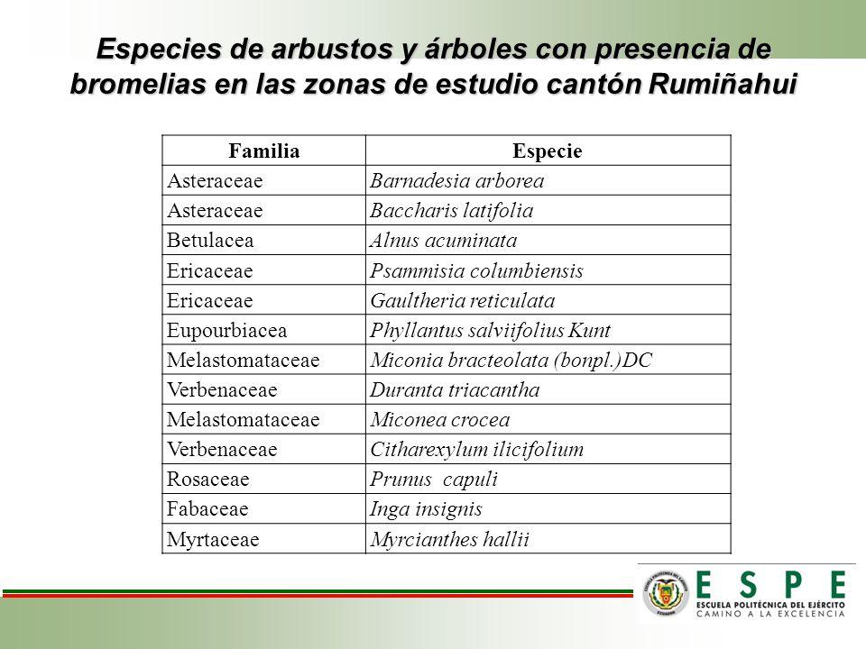 Especies de arbustos y árboles con presencia de bromelias en las zonas de estudio cantón Rumiñahui