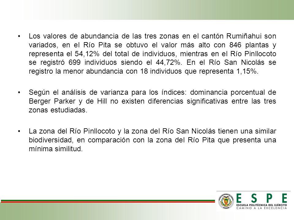 Los valores de abundancia de las tres zonas en el cantón Rumiñahui son variados, en el Río Pita se obtuvo el valor más alto con 846 plantas y representa el 54,12% del total de individuos, mientras en el Río Pinllocoto se registró 699 individuos siendo el 44,72%. En el Río San Nicolás se registro la menor abundancia con 18 individuos que representa 1,15%.
