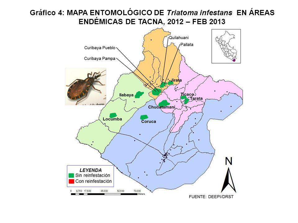 Gráfico 4: MAPA ENTOMOLÓGICO DE Triatoma infestans EN ÁREAS