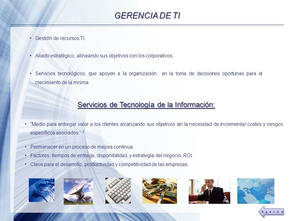 Servicios de Tecnología de la Información:
