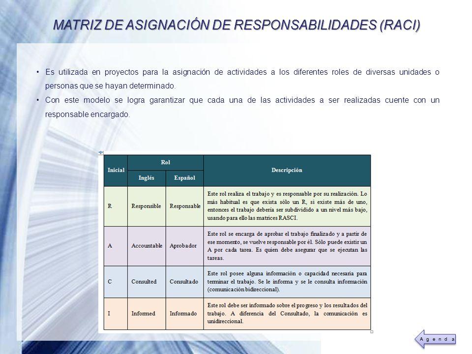 MATRIZ DE ASIGNACIÓN DE RESPONSABILIDADES (RACI)