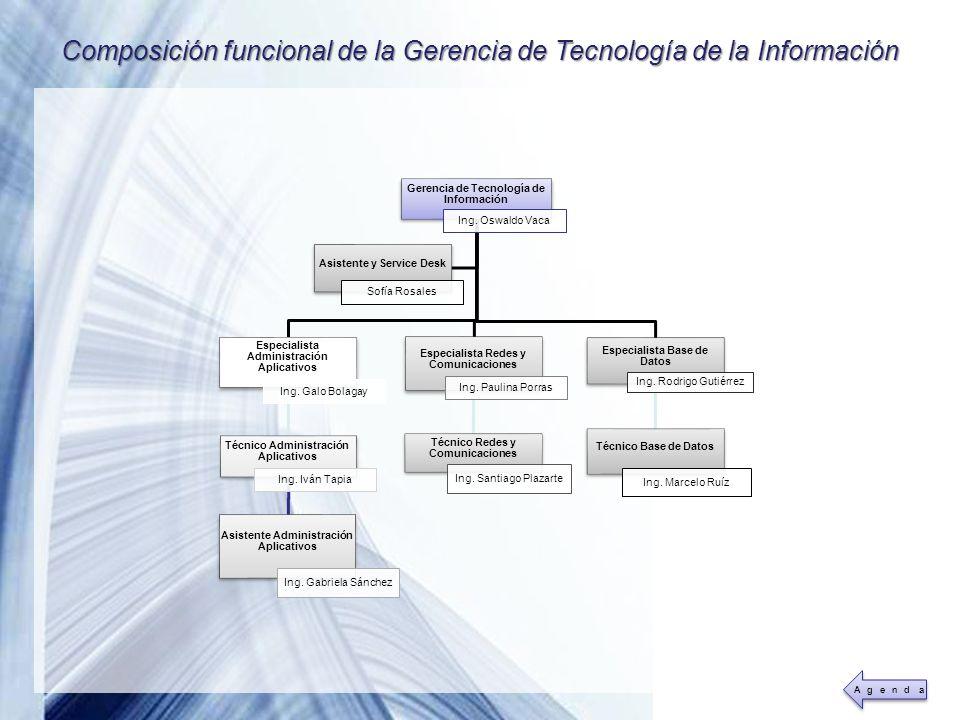Composición funcional de la Gerencia de Tecnología de la Información