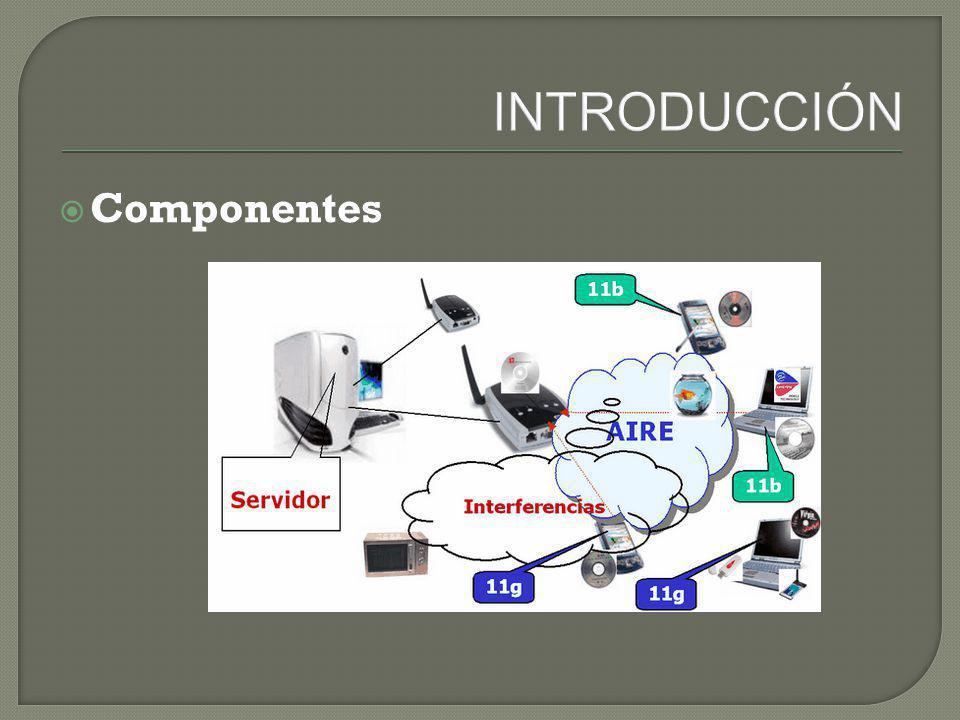 INTRODUCCIÓN Componentes