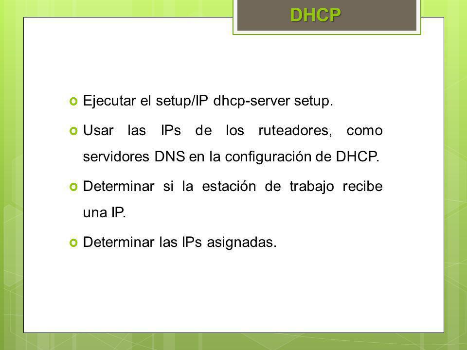 DHCP Ejecutar el setup/IP dhcp-server setup.